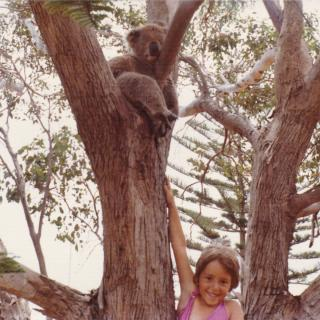 Dad took this amazing photo of me trying to touch the Koala with Mum holding me up as high as she could. We are at Cowes, Phillip Island on January 1st, 1976.