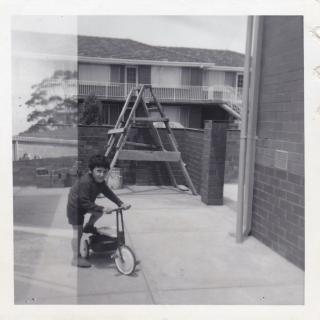 Jimmy with his tricycle. In this photo you can see that Dad had built a brick wall coming in towards the house, but many years later a council tree root lifted it and the wall collapsed.