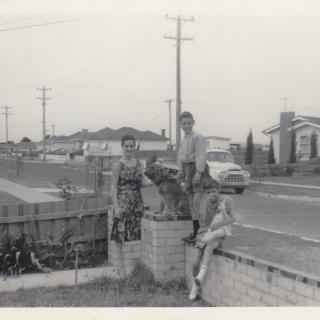 Mum was 19yrs old when this photo was taken of her and her two siblings with the neighbours dog.  What a memorable street view of how Haresta Avenue looked like in January 1964.